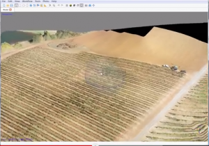 vineyards_computer